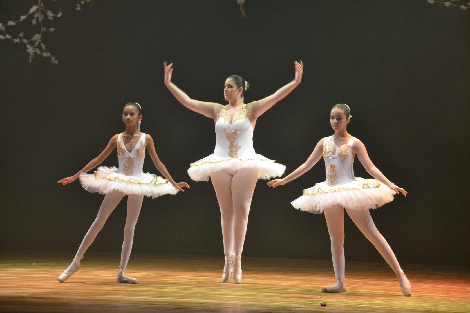 Festival de Ballet – 2017 – A Bela e a Fera – Paulo Pontes
